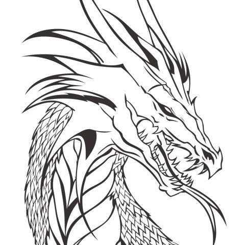 Coloring Pages Of Dragons Dragon Head Coloring Page Free Printable Coloring Pages