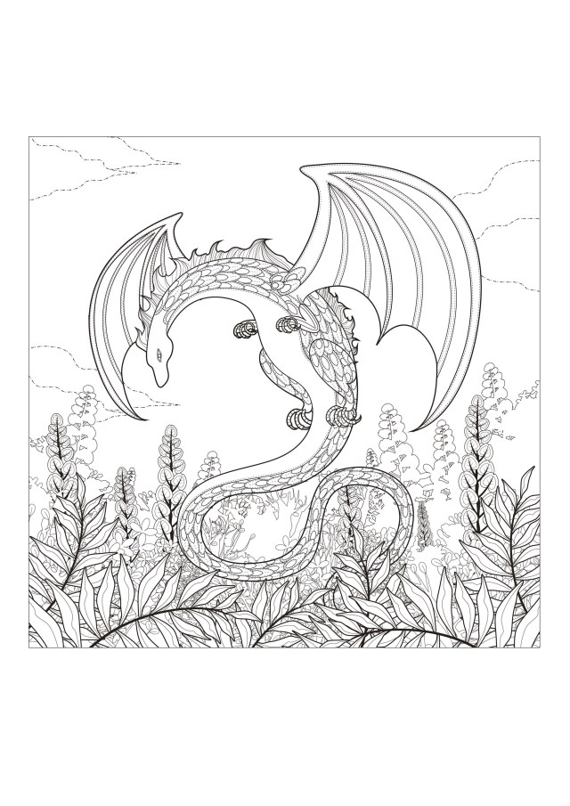 25+ creative photo of coloring pages of dragons