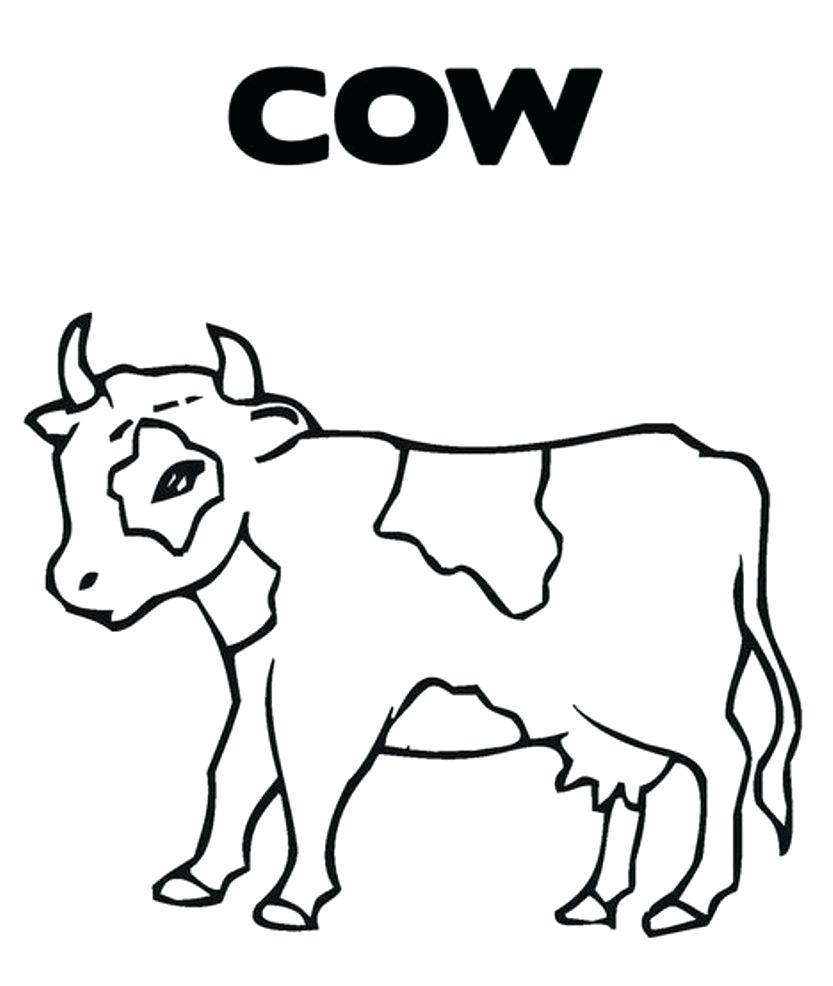 Cow Coloring Page Coloring Pages Of A Cow Seaahco