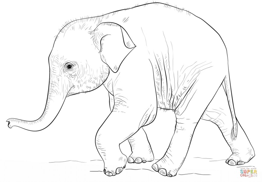 Elephant Coloring Pages Cute Ba Elephant Coloring Page Free Printable Coloring Pages