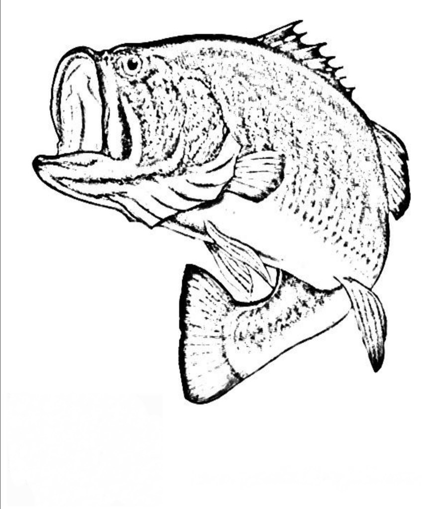 Fish Coloring Pages Realistic Fish Coloring Pages Best Coloring Pages Collection