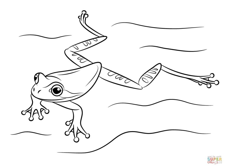 Frog Coloring Pages Tree Frog Coloring Pages Futurama