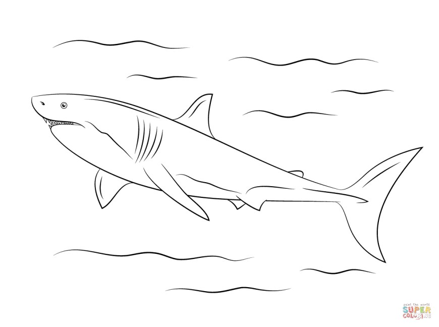 Great White Shark Coloring Pages Great White Shark Coloring Page Free Printable Coloring Pages