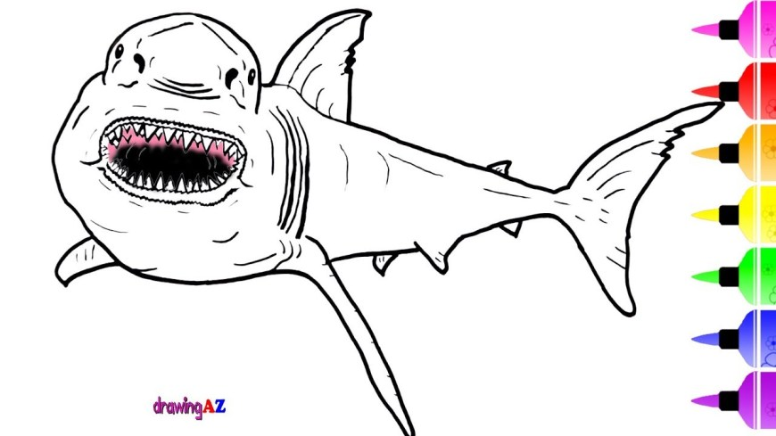 Great White Shark Coloring Pages White Shark Coloring Pages For Kids Drawing And How To Draw Dinosaur