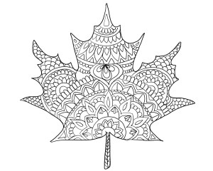 Leaf Coloring Pages Fall Leaf Coloring Page Free Printable And Coloring Contest Ooly