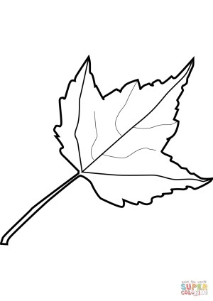 Leaf Coloring Pages Maple Leaf Coloring Page Free Printable Coloring Pages