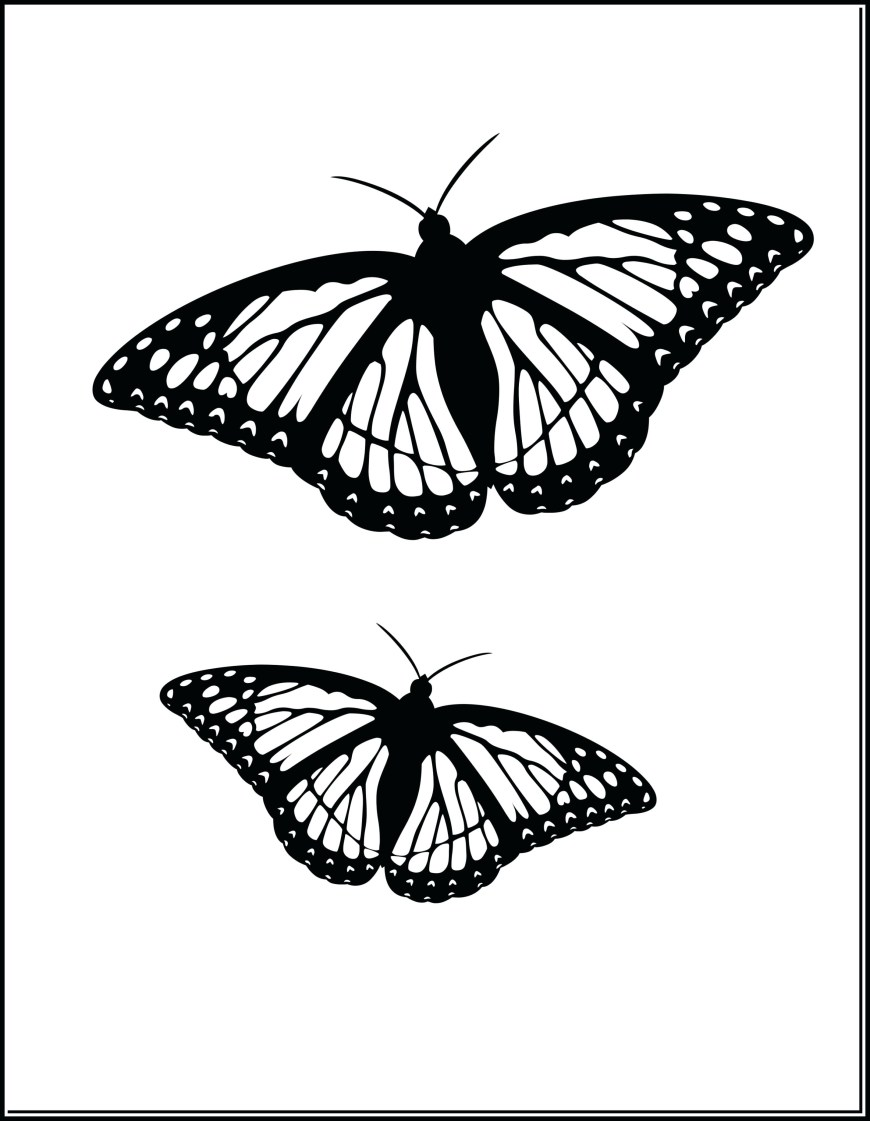 Monarch Butterfly Coloring Page Butterfly Coloring Sheet Complete Monarch Shrewd Stunning Page Well