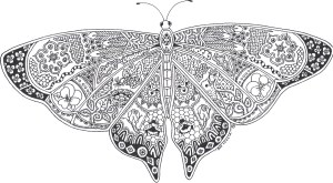 Monarch Butterfly Coloring Page Monarch Butterfly Coloring Book New It S Here Butterfly Colouring