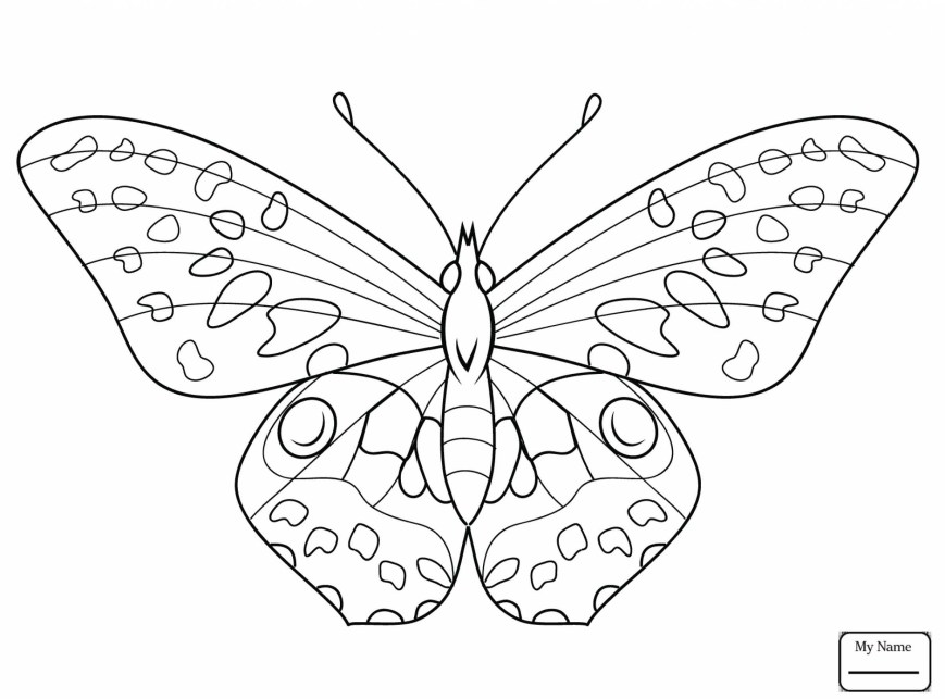 Monarch Butterfly Coloring Page Monarch Butterfly Coloring Page Printable Coloring Page For Kids