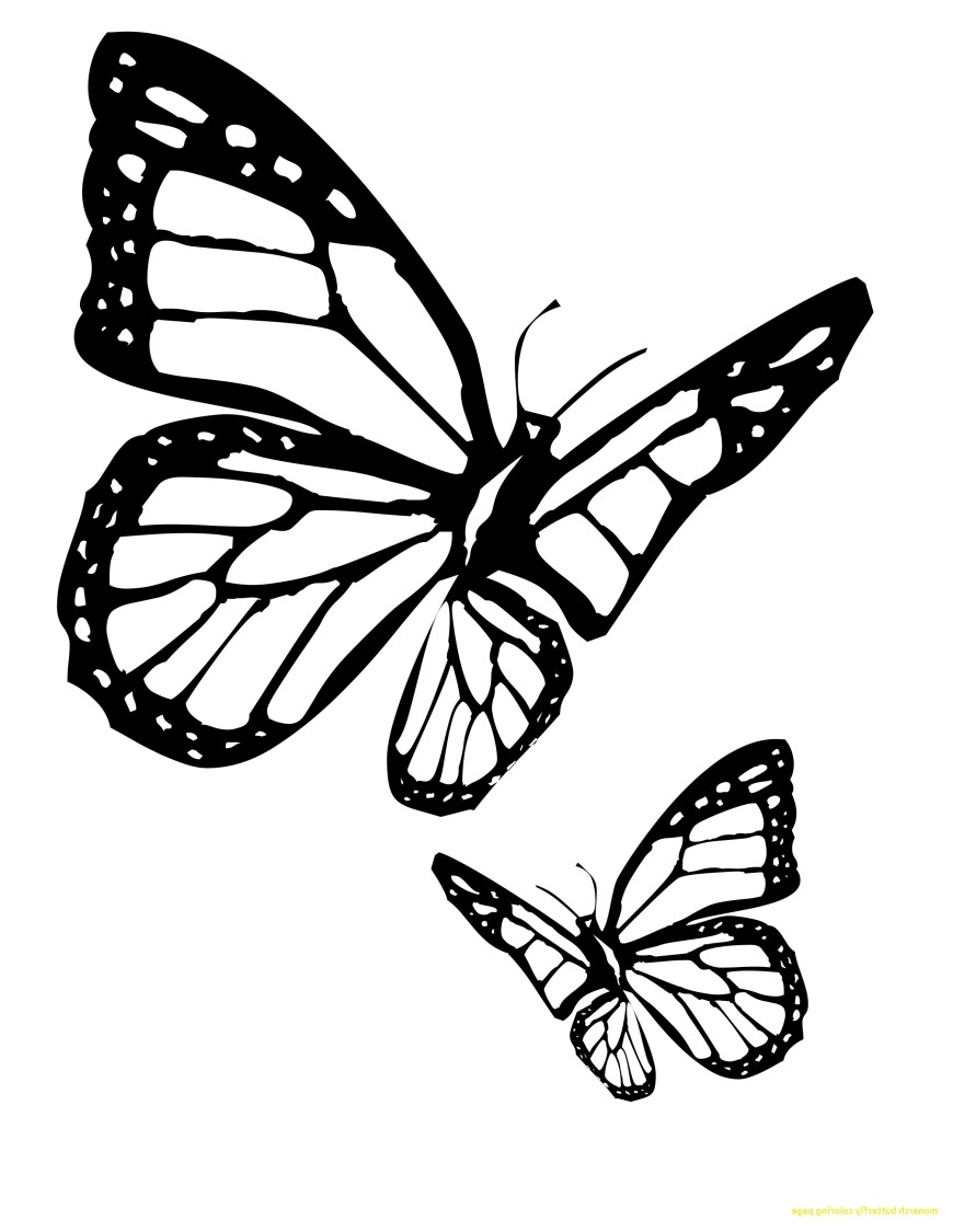 Monarch Butterfly Coloring Page Monarch Butterfly Coloring Pages 9ncm Butterfly Coloring Page New