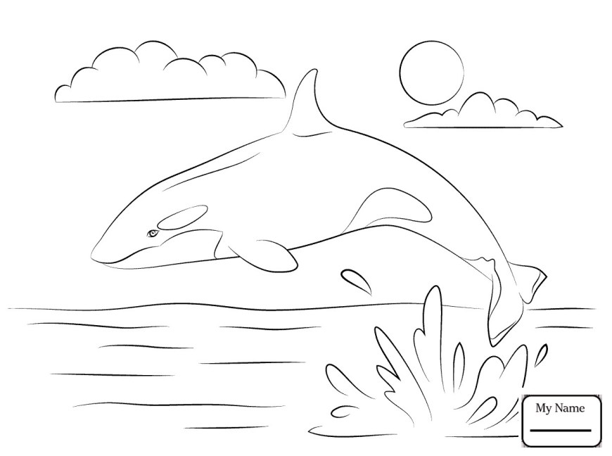 Orca Coloring Pages Killer Whale Coloring Pages 2 Futurama