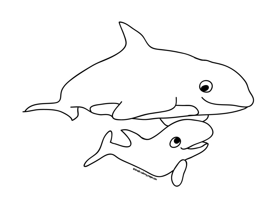 Orca Coloring Pages Orca Whale Coloring Page Coloring Home Orca Coloring Pages Radiokotha