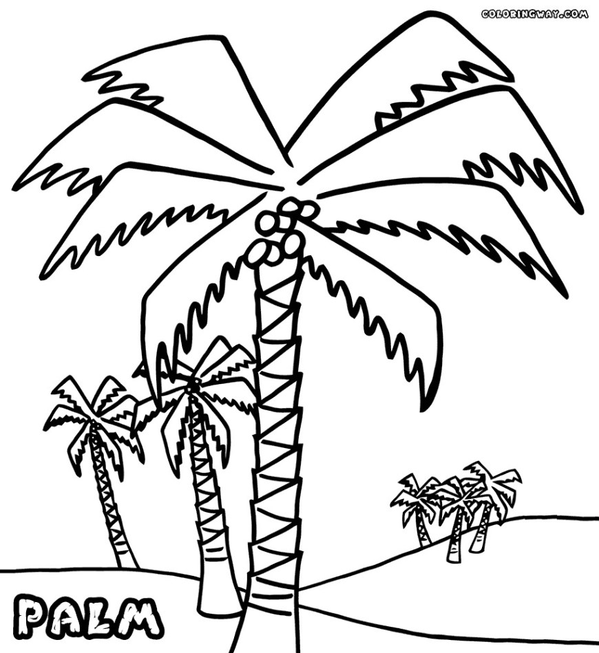 Palm Tree Coloring Page Modern Contemporary Palm Tree Coloring Pages Printable Dreade