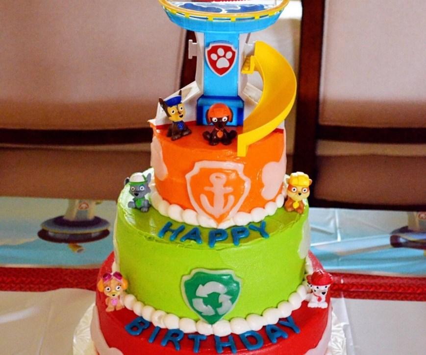 Paw Patrol Birthday Cake Ideas Luxurious Savesave To Paw Patrol Skye Birthday Party Cake Per Throw