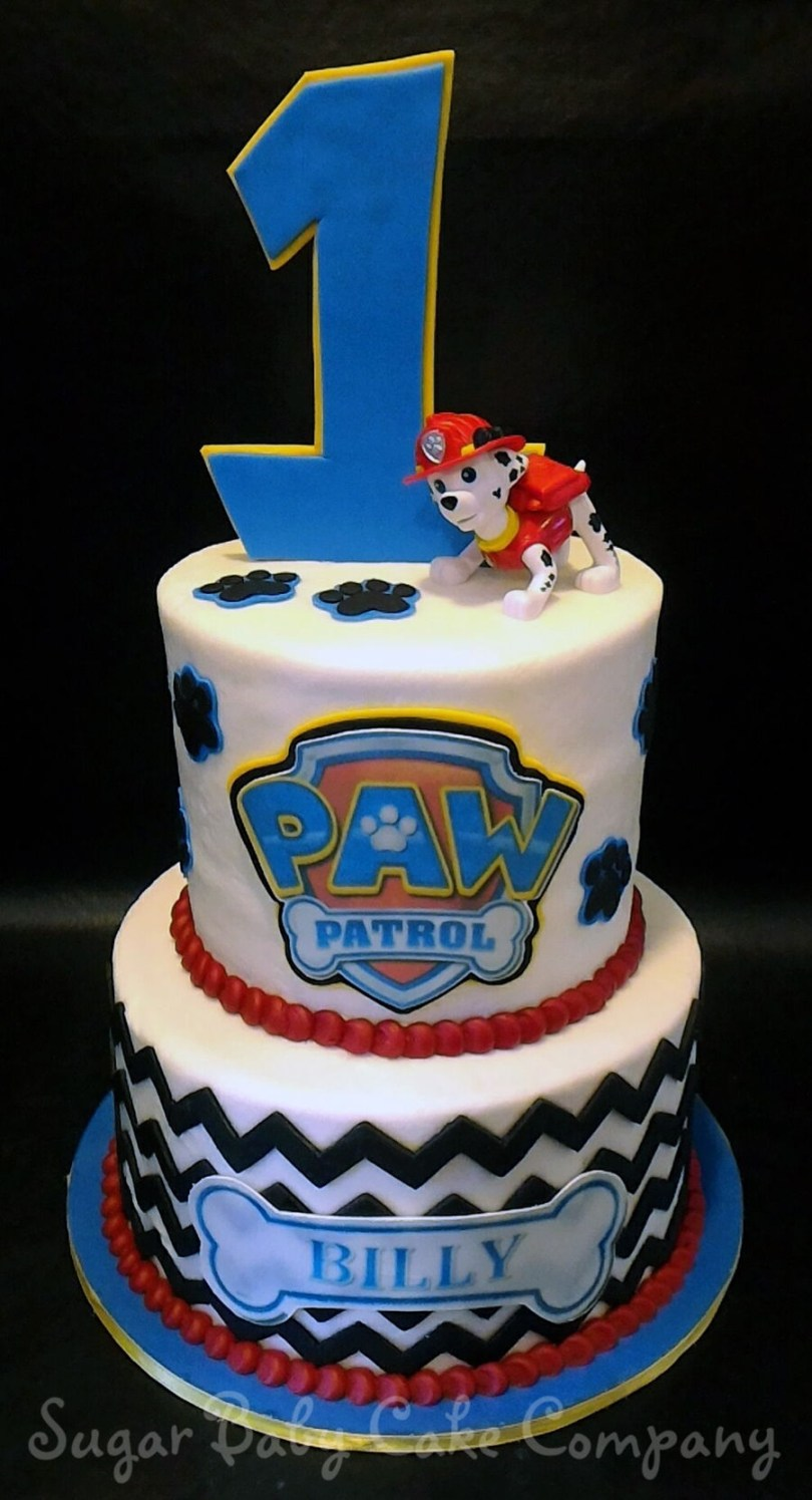 Paw Patrol Birthday Cake Ideas Paw Patrol 1st Birthday Cake Cakecentral Within Birthday Cake Ideas