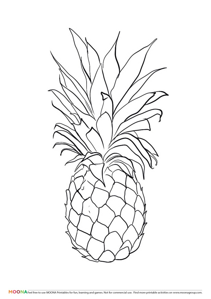 Pineapple Coloring Page Pineapples Coloring Pages