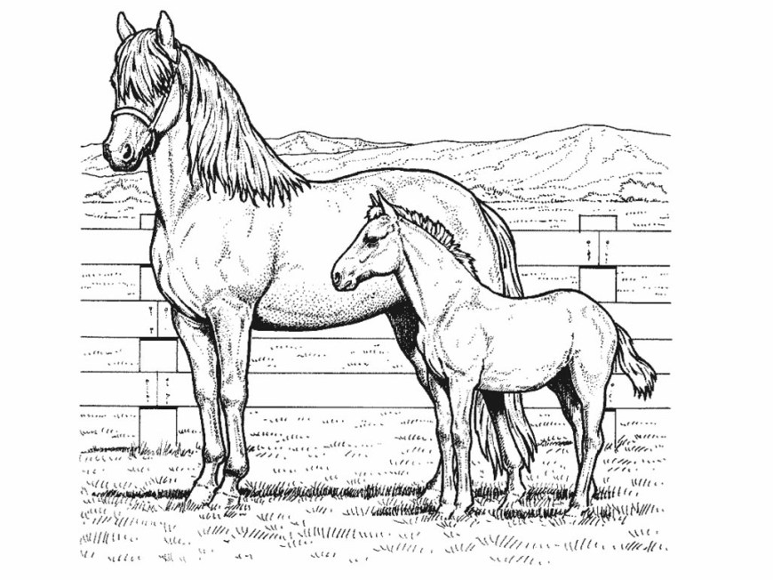 Printable Horse Coloring Pages Horse Coloring Pages Free Coloring Pages 1 Free Printable