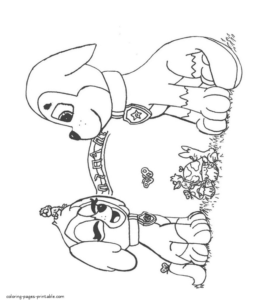 Printable Paw Patrol Coloring Pages Free Printable Coloring Sheets With Color Card Also Preschool