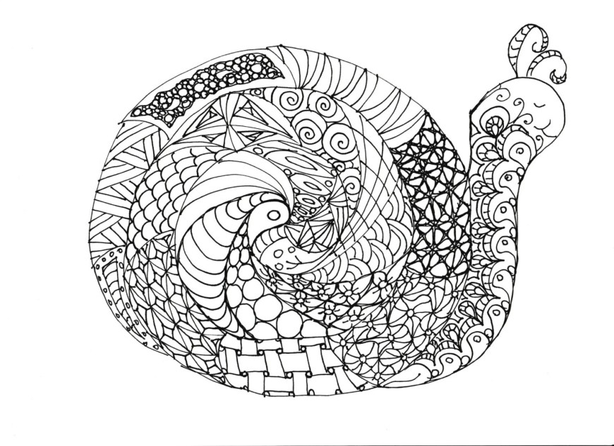 Snail Coloring Page Snail Coloring Page Coloring Pages
