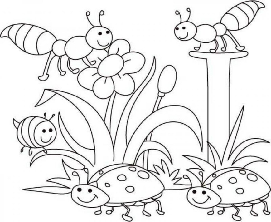 Spring Coloring Page Happy Insect Spring Coloring Pages Coloringsuite
