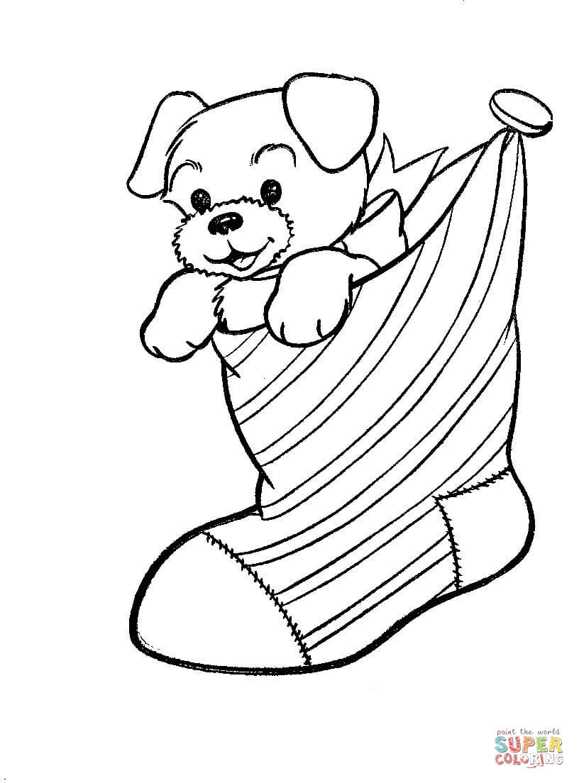 Stocking Coloring Page A Puppy Dog In A Christmas Stocking Coloring Page Free Printable