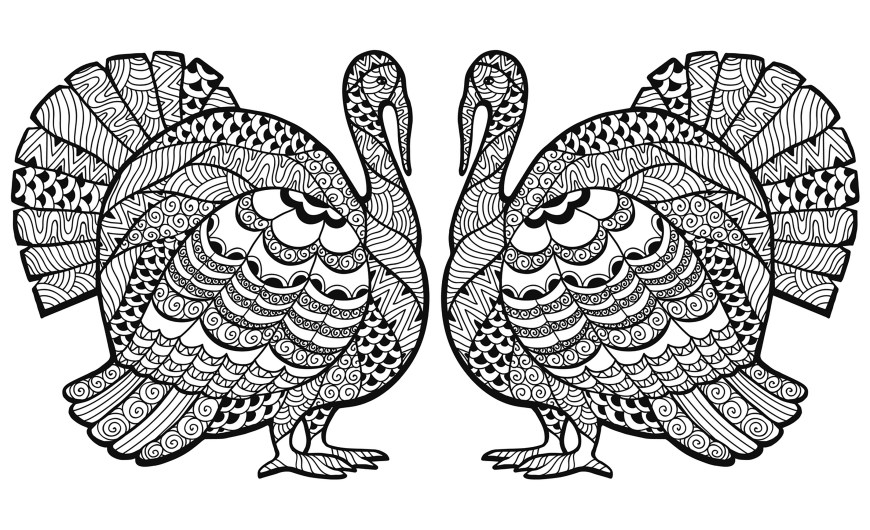 Turkey Coloring Pages Double Turkey Zentangle Coloring Sheet Thanksgiving Adult Coloring