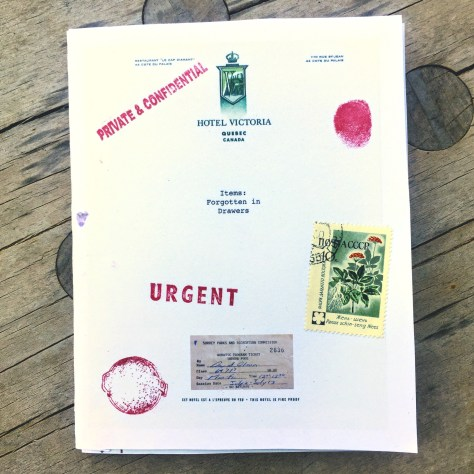 Items: Forgotten in Drawers, Vol. 1 –chapbook 7