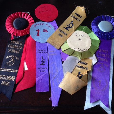 Ribbons: Science Fair, Prince Charles Elementary, various awards