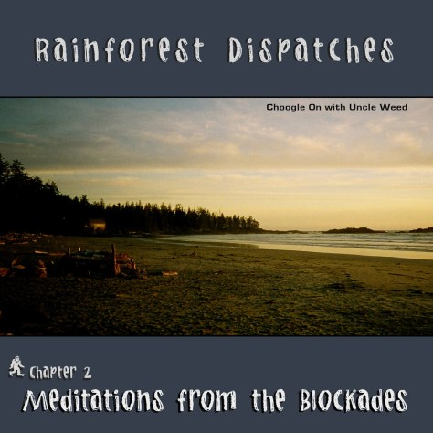 Meditations from the Blockades – Rainforest Dispatches, chapter 2/9
