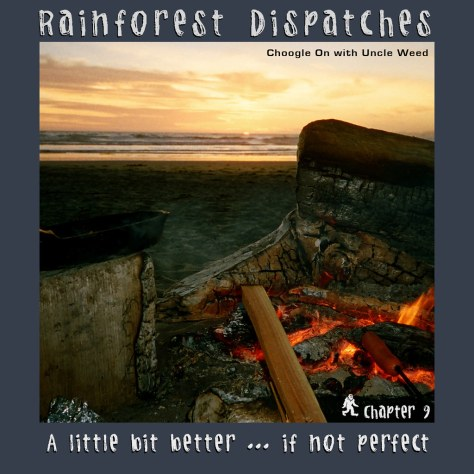 A Little Bit Better ... if not Perfect – Rainforest Dispatches, chapter 9/9