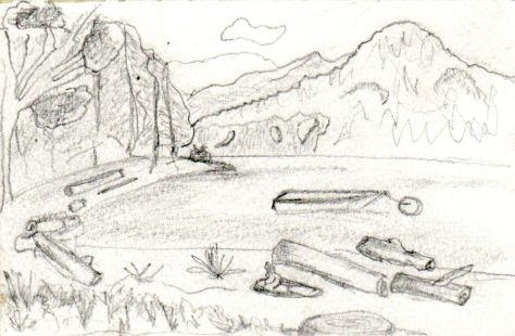 Letters from Russia: Lake driftwood (pencil)
