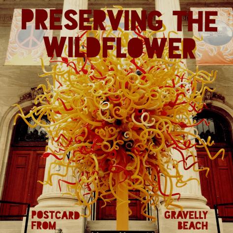 pfgb-wildflower-sm