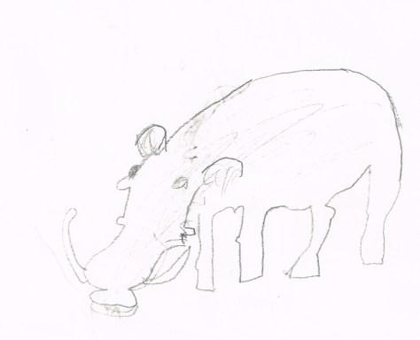 Drawing: Warthog, David Olson, undated (likely 1977)