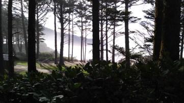 Cape Lookout Picnic