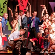 Musicals, Recitals and Plays