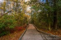 Atlantic County Park - Estell Manor - 07