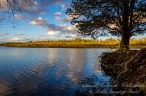 Atlantic County Park - Estell Manor - 09