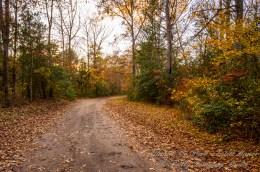 Atlantic County Park - Estell Manor - 11