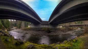 An overpass I could live under (Rosewall Creek)