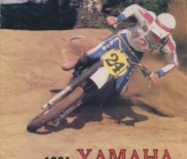 1981 Yz And It Range Thanks To Terry Doman For Supplying The Brochure