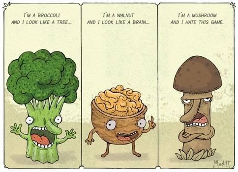 wtf_mushroom.jpg