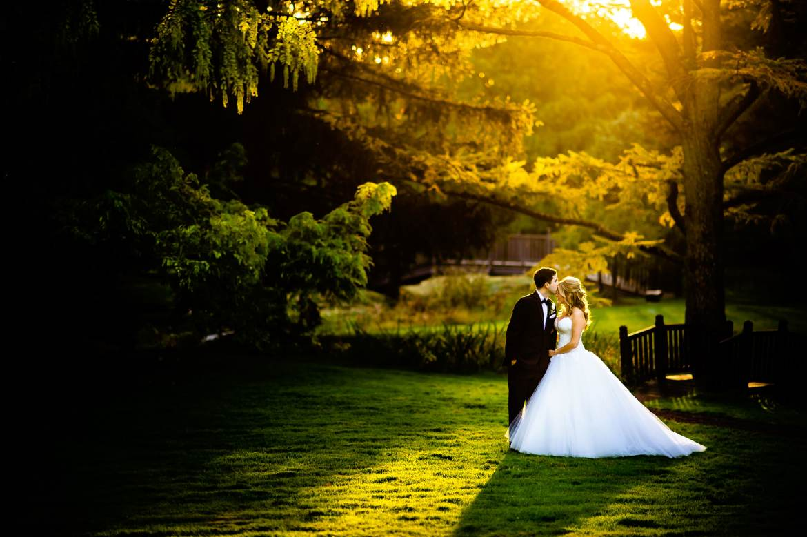 Natural Light Wedding Photo by field