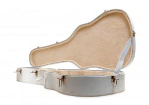 Guitar case open