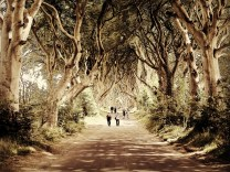 Dark Hedges. The tree tunnel as seen in Game of Thrones Season 2 Episode 1. Armoy, County Antrim. Used a few filters for effect.