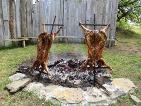 BBQ lamb...it's what's for lunch