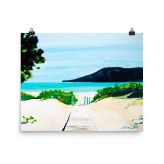 Flamenco Beach Puerto Rico Art