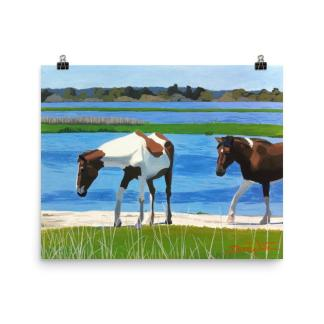 Assateague Maryland Wild Horses Art