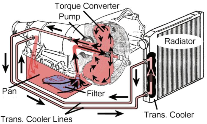 Fluid Circulation