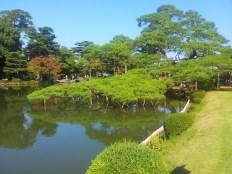 Manicured trees and pond at Kenrokuen garden, Kanazawa