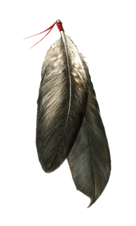EagleFeathers